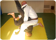RocknRoll Brazilian Jiu Jitsu Private Lessons and Personal Training in Orange County, California